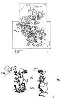 Cronica Cercetărilor Arheologice din România, Campania 2000. Raportul nr. 15, Balşa, Dumbrăiţă<br /><a href='http://foto.cimec.ro/cronica/2000/015/balsa2.jpg' target=_blank>Priveşte aceeaşi imagine într-o fereastră nouă</a>