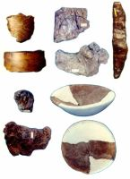 Chronicle of the Archaeological Excavations in Romania, 2000 Campaign. Report no. 18, Beciu, Cariera de argilă<br /><a href='http://foto.cimec.ro/cronica/2000/018/12.jpg' target=_blank>Display the same picture in a new window</a>