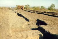 Chronicle of the Archaeological Excavations in Romania, 2000 Campaign. Report no. 18, Beciu, Cariera de argilă<br /><a href='http://foto.cimec.ro/cronica/2000/018/9.jpg' target=_blank>Display the same picture in a new window</a>