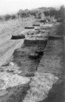 Cronica Cercetărilor Arheologice din România, Campania 2000. Raportul nr. 18, Beciu, Cariera de argilă<br /><a href='http://foto.cimec.ro/cronica/2000/018/7.jpg' target=_blank>Priveşte aceeaşi imagine într-o fereastră nouă</a>