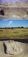 Cronica Cercetărilor Arheologice din România, Campania 2000. Raportul nr. 44, C&#226;rcea, La Hanuri<br /><a href='http://foto.cimec.ro/cronica/2000/044/F7.jpg' target=_blank>Priveşte aceeaşi imagine într-o fereastră nouă</a>