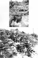 Chronicle of the Archaeological Excavations in Romania, 2000 Campaign. Report no. 53, Covasna, Curmătura (In Cier)<br /><a href='http://foto.cimec.ro/cronica/2000/053/cetatea-zanelor.jpg' target=_blank>Display the same picture in a new window</a>