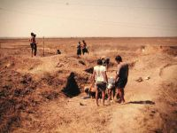 Chronicle of the Archaeological Excavations in Romania, 2000 Campaign. Report no. 67, Gălăţui, Movila Berzei (Movila Coteţ, Movila Verde)<br /><a href='http://foto.cimec.ro/cronica/2000/067/wgalmb-1.jpg' target=_blank>Display the same picture in a new window</a>