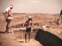Chronicle of the Archaeological Excavations in Romania, 2000 Campaign. Report no. 67, Gălăţui, Movila Berzei (Movila Coteţ, Movila Verde)<br /><a href='http://foto.cimec.ro/cronica/2000/067/wgalmb-2.jpg' target=_blank>Display the same picture in a new window</a>