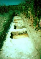 Chronicle of the Archaeological Excavations in Romania, 2000 Campaign. Report no. 71, Gherghiţa, La Târg (Şcoala Generală)<br /><a href='http://foto.cimec.ro/cronica/2000/071/foto-gherghita-2000-1.jpg' target=_blank>Display the same picture in a new window</a>