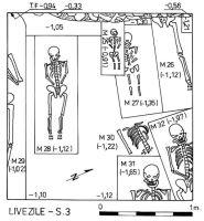 Cronica Cercetărilor Arheologice din România, Campania 2000. Raportul nr. 109, Livezile<br /><a href='http://foto.cimec.ro/cronica/2000/109/p4.jpg' target=_blank>Priveşte aceeaşi imagine într-o fereastră nouă</a>