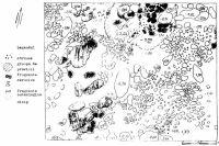 Cronica Cercetărilor Arheologice din România, Campania 2000. Raportul nr. 149, Pietroasele, Valea Bazinului (La puţul lui Cârnu Puche)<br /><a href='http://foto.cimec.ro/cronica/2000/149/pl6.jpg' target=_blank>Priveşte aceeaşi imagine într-o fereastră nouă</a>