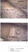 Chronicle of the Archaeological Excavations in Romania, 2000 Campaign. Report no. 174, Roşia Montană, La Hop-Găuri<br /><a href='http://foto.cimec.ro/cronica/2000/174/untitled-6-copy.jpg' target=_blank>Display the same picture in a new window</a>