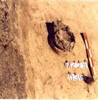 Cronica Cercetărilor Arheologice din România, Campania 2000. Raportul nr. 192, Stelnica, Grădiştea Mare<br /><a href='http://foto.cimec.ro/cronica/2000/192/STEL1.jpg' target=_blank>Priveşte aceeaşi imagine într-o fereastră nouă</a>