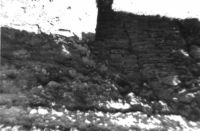 Chronicle of the Archaeological Excavations in Romania, 2000 Campaign. Report no. 204, Târgovişte, Biserica Grecilor<br /><a href='http://foto.cimec.ro/cronica/2000/204/fig1.jpg' target=_blank>Display the same picture in a new window</a>