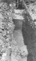 Chronicle of the Archaeological Excavations in Romania, 2000 Campaign. Report no. 204, Târgovişte, Biserica Grecilor<br /><a href='http://foto.cimec.ro/cronica/2000/204/fig3.jpg' target=_blank>Display the same picture in a new window</a>