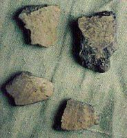 Chronicle of the Archaeological Excavations in Romania, 2000 Campaign. Report no. 219, Vaslui<br /><a href='http://foto.cimec.ro/cronica/2000/219/24.jpg' target=_blank>Display the same picture in a new window</a>