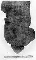 Cronica Cercetărilor Arheologice din România, Campania 2000. Raportul nr. 231, Ziduri, Măgura<br /><a href='http://foto.cimec.ro/cronica/2000/231/fig-7-2.jpg' target=_blank>Priveşte aceeaşi imagine într-o fereastră nouă</a>