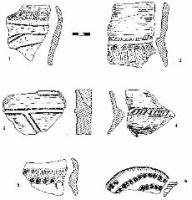 Cronica Cercetărilor Arheologice din România, Campania 2000. Raportul nr. 231, Ziduri, Măgura<br /><a href='http://foto.cimec.ro/cronica/2000/231/fig-8.jpg' target=_blank>Priveşte aceeaşi imagine într-o fereastră nouă</a>