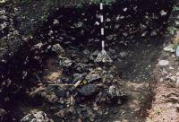 Cronica Cercetărilor Arheologice din România, Campania 2001. Raportul nr. 18, Ardeu, Cetăţuie (Cetăţeaua)<br /><a href='http://foto.cimec.ro/cronica/2001/018/foto4.jpg' target=_blank>Priveşte aceeaşi imagine într-o fereastră nouă</a>