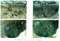 Chronicle of the Archaeological Excavations in Romania, 2001 Campaign. Report no. 26, Băneşti, Dealul Domnii<br /><a href='http://foto.cimec.ro/cronica/2001/026/Pl5.jpg' target=_blank>Display the same picture in a new window</a>