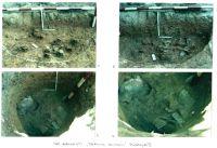 Cronica Cercetărilor Arheologice din România, Campania 2001. Raportul nr. 26, Băneşti, Dealul Domnii<br /><a href='http://foto.cimec.ro/cronica/2001/026/Pl5.jpg' target=_blank>Priveşte aceeaşi imagine într-o fereastră nouă</a>