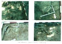 Cronica Cercetărilor Arheologice din România, Campania 2001. Raportul nr. 26, Băneşti, Dealul Domnii<br /><a href='http://foto.cimec.ro/cronica/2001/026/Pl7.jpg' target=_blank>Priveşte aceeaşi imagine într-o fereastră nouă</a>