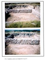 Chronicle of the Archaeological Excavations in Romania, 2001 Campaign. Report no. 49, Capidava, Cetate.<br /> Sector 06-ilustratie sector X.<br /><a href='http://foto.cimec.ro/cronica/2001/049/sectorestpl1.jpg' target=_blank>Display the same picture in a new window</a>