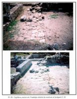 Chronicle of the Archaeological Excavations in Romania, 2001 Campaign. Report no. 49, Capidava, Cetate.<br /> Sector 06-ilustratie sector X.<br /><a href='http://foto.cimec.ro/cronica/2001/049/sectorestpl3.jpg' target=_blank>Display the same picture in a new window</a>
