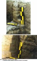 Chronicle of the Archaeological Excavations in Romania, 2001 Campaign. Report no. 57, Căscioarele, D-aia parte<br /><a href='http://foto.cimec.ro/cronica/2001/057/Fig02.jpg' target=_blank>Display the same picture in a new window</a>