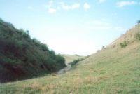Cronica Cercetărilor Arheologice din România, Campania 2001. Raportul nr. 62, Cârlomăneşti, Arman<br /><a href='http://foto.cimec.ro/cronica/2001/062/003.jpg' target=_blank>Priveşte aceeaşi imagine într-o fereastră nouă</a>