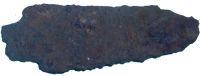 Cronica Cercetărilor Arheologice din România, Campania 2001. Raportul nr. 65.1, Chitila, La fermă (Fermă)<br /><a href='http://foto.cimec.ro/cronica/2001/065-bis/PC051504.JPG' target=_blank>Priveşte aceeaşi imagine într-o fereastră nouă</a>