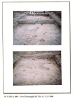Chronicle of the Archaeological Excavations in Romania, 2001 Campaign. Report no. 65, Cheia, Vatra satului.<br /> Sector ILUSTRATIE-CHEIA-2017.<br /><a href='http://foto.cimec.ro/cronica/2001/065/pl-ii.jpg' target=_blank>Display the same picture in a new window</a>