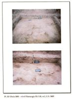 Chronicle of the Archaeological Excavations in Romania, 2001 Campaign. Report no. 65, Cheia, Vatra satului.<br /> Sector ILUSTRATIE-CHEIA-2017.<br /><a href='http://foto.cimec.ro/cronica/2001/065/pl-iii.jpg' target=_blank>Display the same picture in a new window</a>