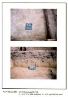 Chronicle of the Archaeological Excavations in Romania, 2001 Campaign. Report no. 65, Cheia, Vatra satului.<br /> Sector ILUSTRATIE-CHEIA-2017.<br /><a href='http://foto.cimec.ro/cronica/2001/065/pl-iv.jpg' target=_blank>Display the same picture in a new window</a>