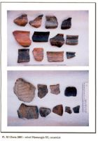 Chronicle of the Archaeological Excavations in Romania, 2001 Campaign. Report no. 65, Cheia, Vatra satului.<br /> Sector ILUSTRATIE-CHEIA-2017.<br /><a href='http://foto.cimec.ro/cronica/2001/065/pl-xi.jpg' target=_blank>Display the same picture in a new window</a>
