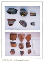 Chronicle of the Archaeological Excavations in Romania, 2001 Campaign. Report no. 65, Cheia, Vatra satului.<br /> Sector ILUSTRATIE-CHEIA-2017.<br /><a href='http://foto.cimec.ro/cronica/2001/065/pl-xiii.jpg' target=_blank>Display the same picture in a new window</a>