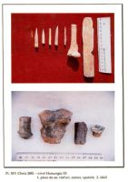 Chronicle of the Archaeological Excavations in Romania, 2001 Campaign. Report no. 65, Cheia, Vatra satului.<br /> Sector ILUSTRATIE-CHEIA-2017.<br /><a href='http://foto.cimec.ro/cronica/2001/065/pl-xiv.jpg' target=_blank>Display the same picture in a new window</a>