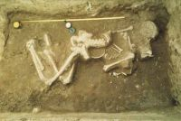Chronicle of the Archaeological Excavations in Romania, 2001 Campaign. Report no. 89, Dudeştii Vechi, Movila lui Deciov (Östelep)<br /><a href='http://foto.cimec.ro/cronica/2001/089/dudesti02.jpg' target=_blank>Display the same picture in a new window</a>