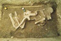Cronica Cercetărilor Arheologice din România, Campania 2001. Raportul nr. 89, Dudeştii Vechi, Movila lui Deciov (Östelep)<br /><a href='http://foto.cimec.ro/cronica/2001/089/dudesti02.jpg' target=_blank>Priveşte aceeaşi imagine într-o fereastră nouă</a>