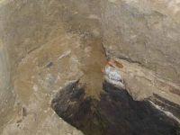 Cronica Cercetărilor Arheologice din România, Campania 2001. Raportul nr. 111, Hârlău<br /><a href='http://foto.cimec.ro/cronica/2001/111/P1010147.JPG' target=_blank>Priveşte aceeaşi imagine într-o fereastră nouă</a>