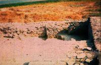 Cronica Cercetărilor Arheologice din România, Campania 2001. Raportul nr. 123, Istria, Cetate.<br /> Sectorul sectorMNIR.<br /><a href='http://foto.cimec.ro/cronica/2001/123/Scan1716.jpg' target=_blank>Priveşte aceeaşi imagine într-o fereastră nouă</a>