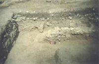 Chronicle of the Archaeological Excavations in Romania, 2001 Campaign. Report no. 128, Jurilovca, Insula Bisericuţa<br /><a href='http://foto.cimec.ro/cronica/2001/128/foto-2.JPG' target=_blank>Display the same picture in a new window</a>