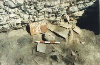 Chronicle of the Archaeological Excavations in Romania, 2001 Campaign. Report no. 128, Jurilovca, Insula Bisericuţa<br /><a href='http://foto.cimec.ro/cronica/2001/128/foto-9.JPG' target=_blank>Display the same picture in a new window</a>