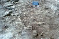 Cronica Cercetărilor Arheologice din România, Campania 2001. Raportul nr. 133, Luncaviţa, Cetăţuia<br /><a href='http://foto.cimec.ro/cronica/2001/133/fig-2.JPG' target=_blank>Priveşte aceeaşi imagine într-o fereastră nouă</a>
