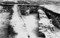 Cronica Cercetărilor Arheologice din România, Campania 2001. Raportul nr. 149, Murighiol, La Cetate (Bataraia)<br /><a href='http://foto.cimec.ro/cronica/2001/149/7.JPG' target=_blank>Priveşte aceeaşi imagine într-o fereastră nouă</a>