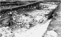 Chronicle of the Archaeological Excavations in Romania, 2001 Campaign. Report no. 149, Murighiol, La Cetate (Bataraia)<br /><a href='http://foto.cimec.ro/cronica/2001/149/8.JPG' target=_blank>Display the same picture in a new window</a>