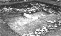 Cronica Cercetărilor Arheologice din România, Campania 2001. Raportul nr. 149, Murighiol, La Cetate (Bataraia)<br /><a href='http://foto.cimec.ro/cronica/2001/149/2.JPG' target=_blank>Priveşte aceeaşi imagine într-o fereastră nouă</a>