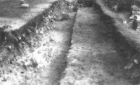 Cronica Cercetărilor Arheologice din România, Campania 2001. Raportul nr. 149, Murighiol, La Cetate (Bataraia)<br /><a href='http://foto.cimec.ro/cronica/2001/149/5.JPG' target=_blank>Priveşte aceeaşi imagine într-o fereastră nouă</a>