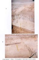 Chronicle of the Archaeological Excavations in Romania, 2001 Campaign. Report no. 155, Oltina, Capu Dealului<br /><a href='http://foto.cimec.ro/cronica/2001/155/capul.jpg' target=_blank>Display the same picture in a new window</a>