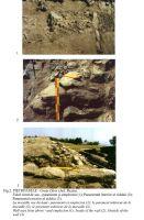 Cronica Cercetărilor Arheologice din România, Campania 2001. Raportul nr. 166, Pietroasa Mic&#259;, Gruiu D&#259;rii<br /><a href='http://foto.cimec.ro/cronica/2001/166/Fig-002.jpg' target=_blank>Priveşte aceeaşi imagine într-o fereastră nouă</a>