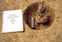 Chronicle of the Archaeological Excavations in Romania, 2001 Campaign. Report no. 181, Roşia Montană, Cârnic (Piatra Corbului).<br /> Sector Imagini_detaliu_necropola.<br /><a href='http://foto.cimec.ro/cronica/2001/181/Imagini-detaliu-necropola/005.JPG' target=_blank>Display the same picture in a new window</a>