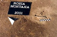 Chronicle of the Archaeological Excavations in Romania, 2001 Campaign. Report no. 181, Roşia Montană, Cârnic (Piatra Corbului).<br /> Sector Imagini_detaliu_necropola.<br /><a href='http://foto.cimec.ro/cronica/2001/181/Imagini-detaliu-necropola/014.JPG' target=_blank>Display the same picture in a new window</a>