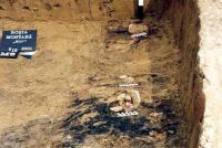 Chronicle of the Archaeological Excavations in Romania, 2001 Campaign. Report no. 181, Roşia Montană, Cârnic (Piatra Corbului).<br /> Sector Imagini_detaliu_necropola.<br /><a href='http://foto.cimec.ro/cronica/2001/181/Imagini-detaliu-necropola/033.JPG' target=_blank>Display the same picture in a new window</a>