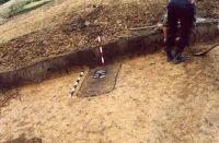Chronicle of the Archaeological Excavations in Romania, 2001 Campaign. Report no. 181, Roşia Montană, Cârnic (Piatra Corbului).<br /> Sector Imagini_detaliu_necropola.<br /><a href='http://foto.cimec.ro/cronica/2001/181/Imagini-detaliu-necropola/042.JPG' target=_blank>Display the same picture in a new window</a>